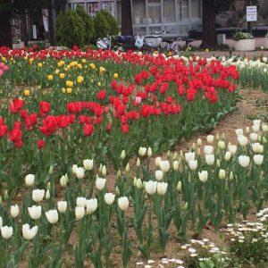 阪神尼崎駅前公園4